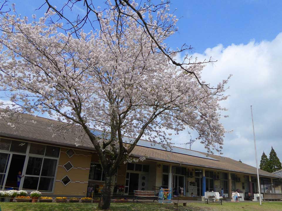 大束中央保育園 メインイメージ写真3